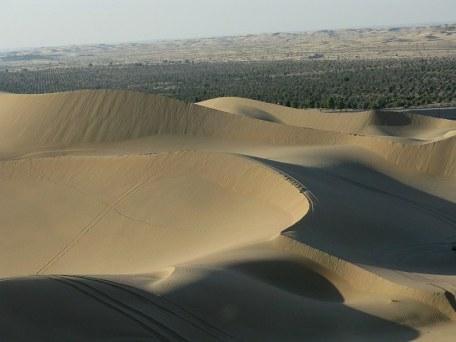 Abu Dhabi Desert: Dune bashing - desert edge