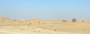 Abu Dhabi Desert route to dunes