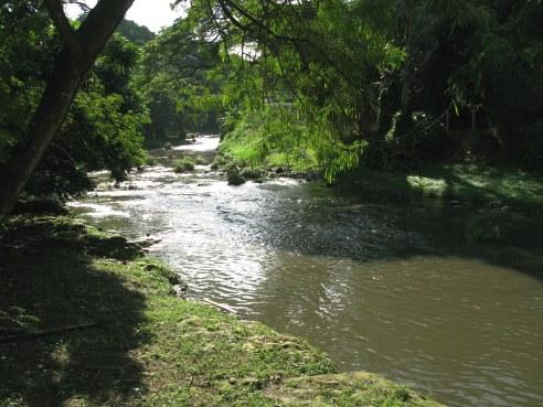 Almendares River Cuba