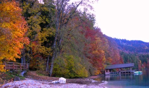 Autumn colours at dawn by the Alpsee boathouse Bavaria