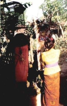 Bali village wedding offerings of welcome