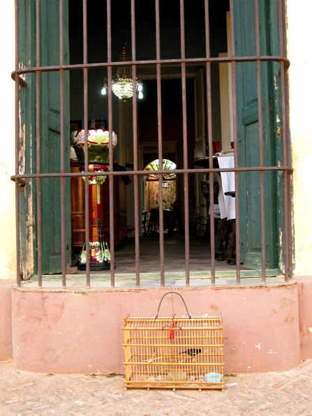 Bird in cage outside shop Trinidad de Cuba