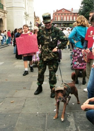 Camouflage dog at Krewe of Barkus Parade New Orleans