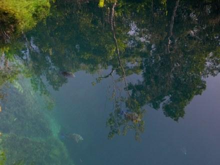 Clear water Cueva de los Peces Bay of Pigs Cuba