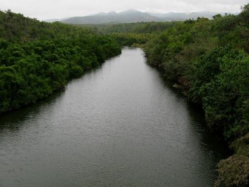 Coastal river Bay of Pigs Cuba