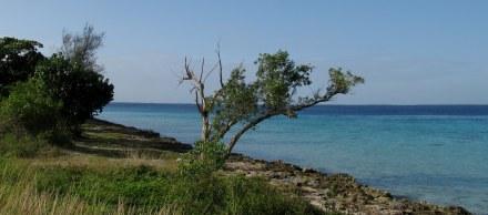 Coastline Bay of Pigs Cuba