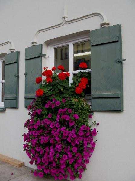 Colour-filled window Hohenschwangau