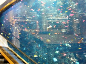 Coloured fish in aquarium beside the lobby escalator Burj Al Arab Dubai