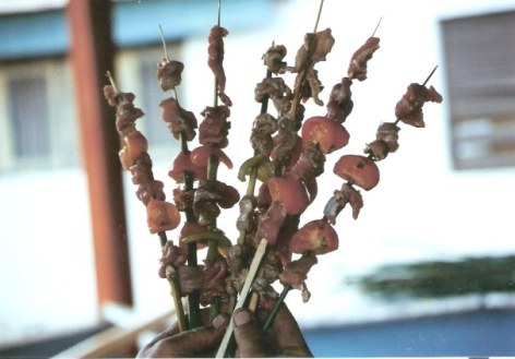Cooked kebabs on reed skewers – Agricultural Fair – Havana