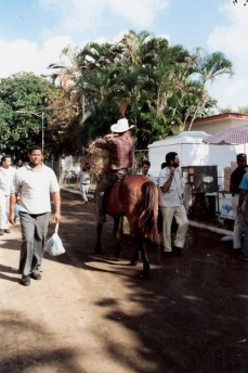 Cowboy riding bareback at agricultural fair – Havana