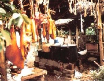 Hanging pork at wedding in Bali mountain village