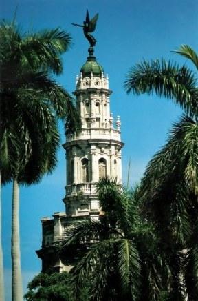 Havana Angel framed by palms