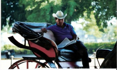 Havana Carriage driver relaxing in the shade – Habana Viejo