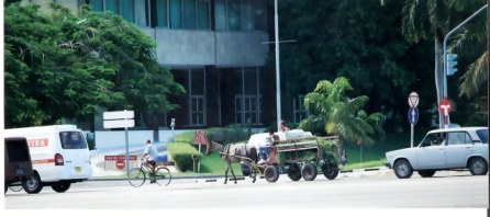 Havana Mule cart crossing Plaza de la Revolución- Revolution Square