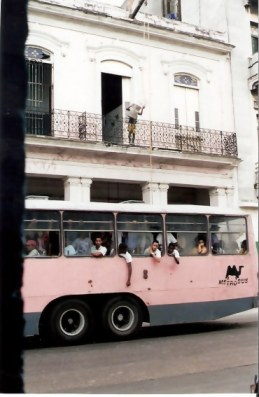 Havana Pink Camelo and balcony shopping by bucket