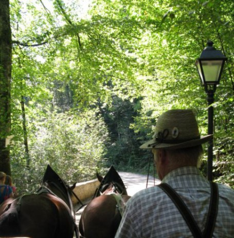 Horse-drawn coach route from Hohenschwangau Bavaria