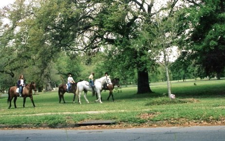Horse riders in Audubon Park New Orleans