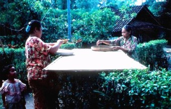 Laying out rice to dry in Bali