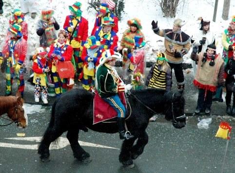 Mainz Carnival Parade Rosenmontag horse