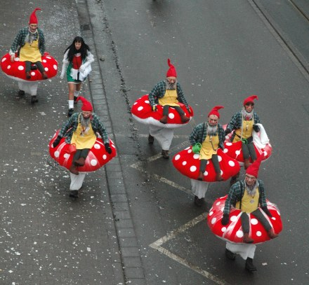Mainz Fastnacht elf and mushroom costumes