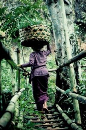 Mountain bamboo bridge in Bali