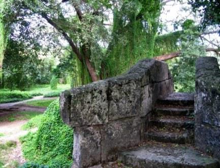 Old stone steps Almendares Park Cuba