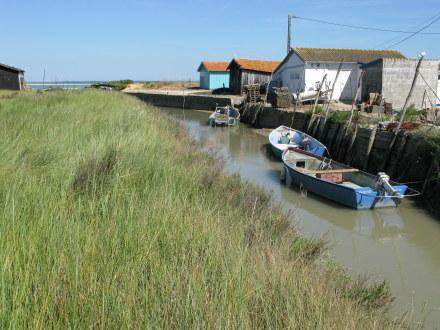 Île d'Oléron oyster boats
