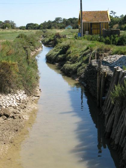 Île d'Oléron oyster channel or claire