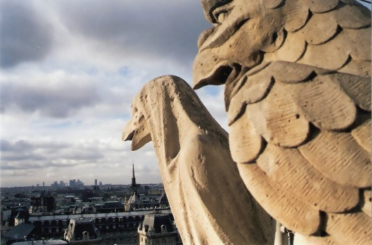 Stone Watch Birds on the Notre Dame Cathedral Tower Paris