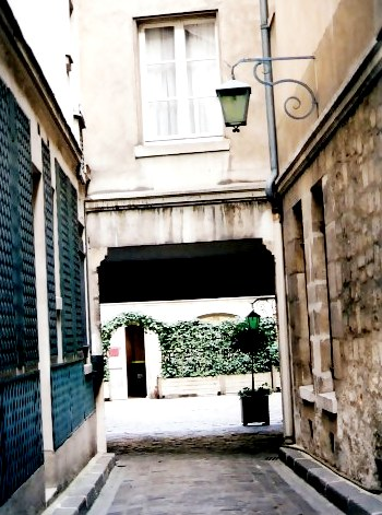 Paris narrow alley with shingled wall