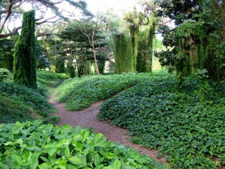 Pathways of Almendares Park Cuba