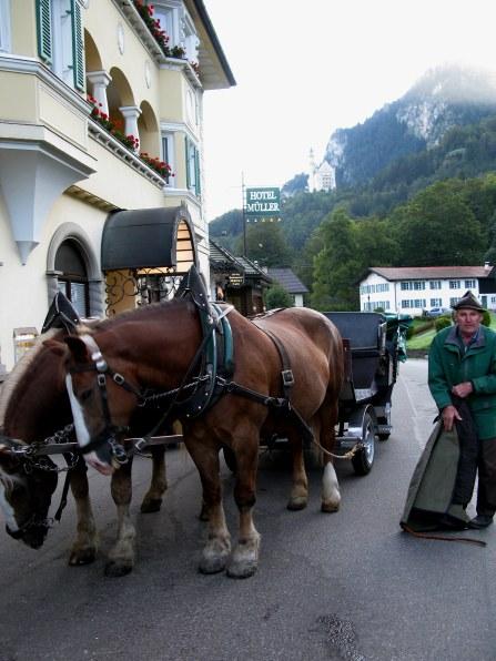 Preparing carriages to Neuschwanstein Castle Bavaria