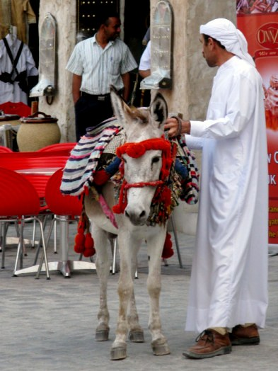 Qatar Doha Old Souk donkey