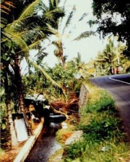 Roadside walkers in Bali