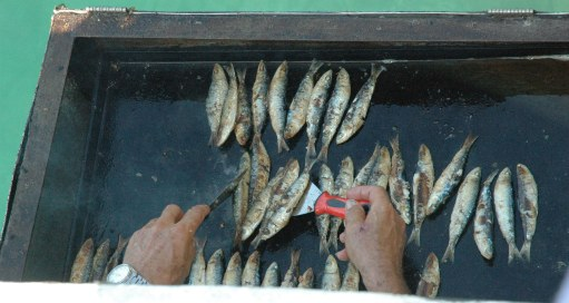 Sardines cooking on stern-side BBQ