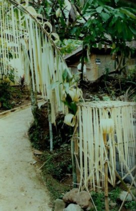 Shredded bamboo-leaf entrance decorations in Bali