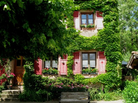 Thumbnail: Vosges House France