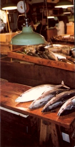 Tokyo Fish Market Fish to be Cut