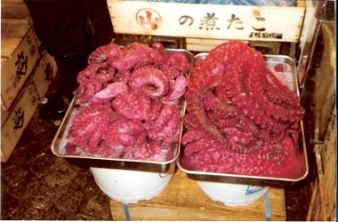 Tokyo Fish Market Red Squid