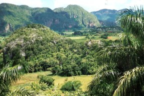 View of Viñales valley from Horizontes Los Jazmines Hotel -Pinar - Cuba
