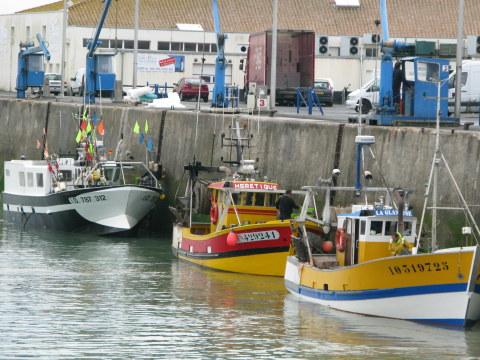 Île d'Oléron port of La Cotinière fishing boats unloading
