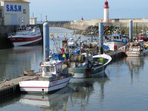Île d'Oléron port of La Cotinière low tide