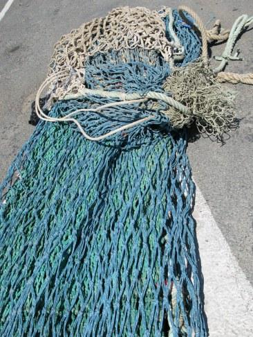 Île d'Oléron port of La Cotinière side-trawl net