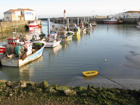 Île d'Oléron La Cotinière trawlers