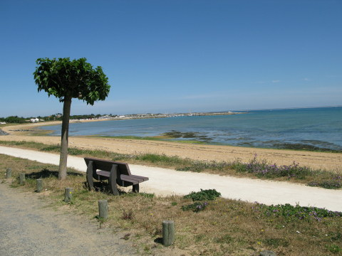 Île d'Oléron St. Denis cycle-path seat