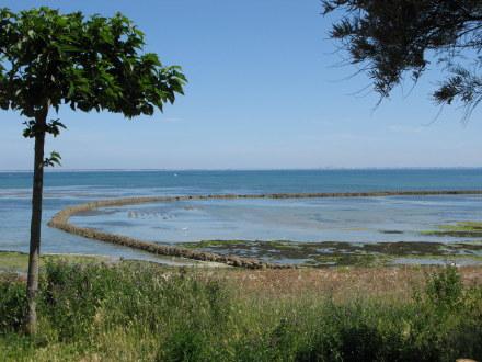 Île d'Oléron St. Denis écluse