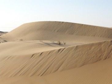 Abu Dhabi Desert: dune patterns forming