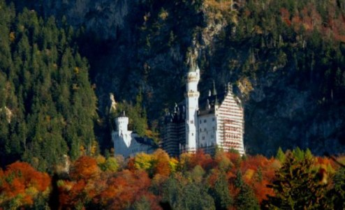Autumn trees around Neuschwanstein Castle