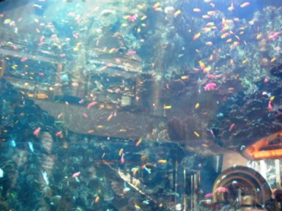 Aquarium beside the lobby escalator Burj Al Arab Dubai