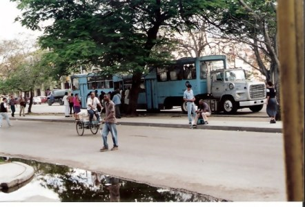 Havana Turquoise Camelo with water truck in background